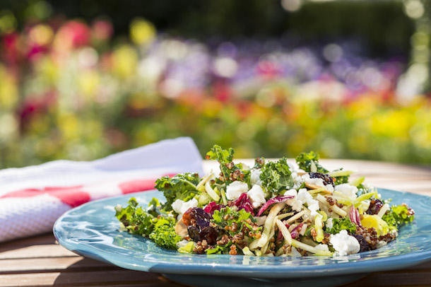 Epcot International Flower & Garden Festival Florida Fresh Kale Salad with Dried Cherries, Almonds and Goat Cheese