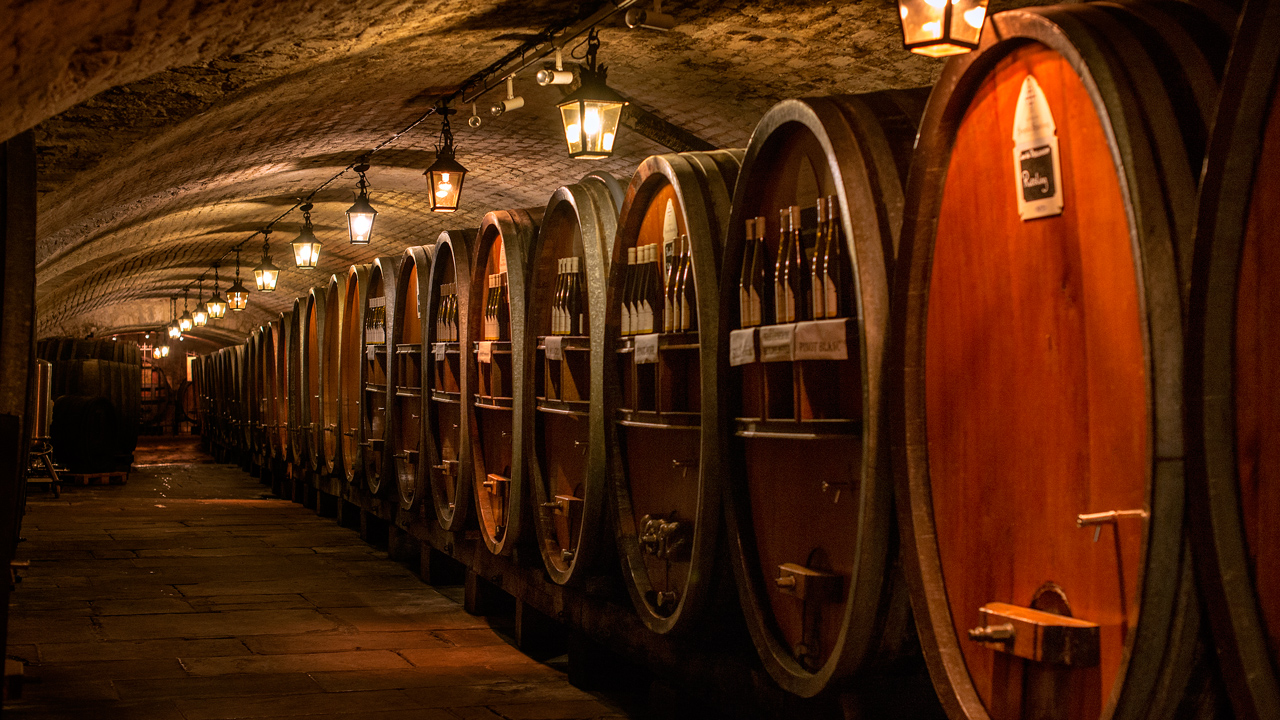 A French wine cave on the food and wine themed Rhine river cruise sailing