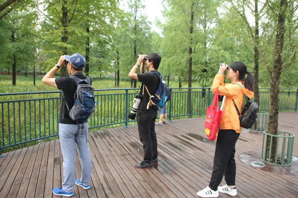 Wildlife Wednesday: Discovering the magic of nature at Shanghai Disney Resort