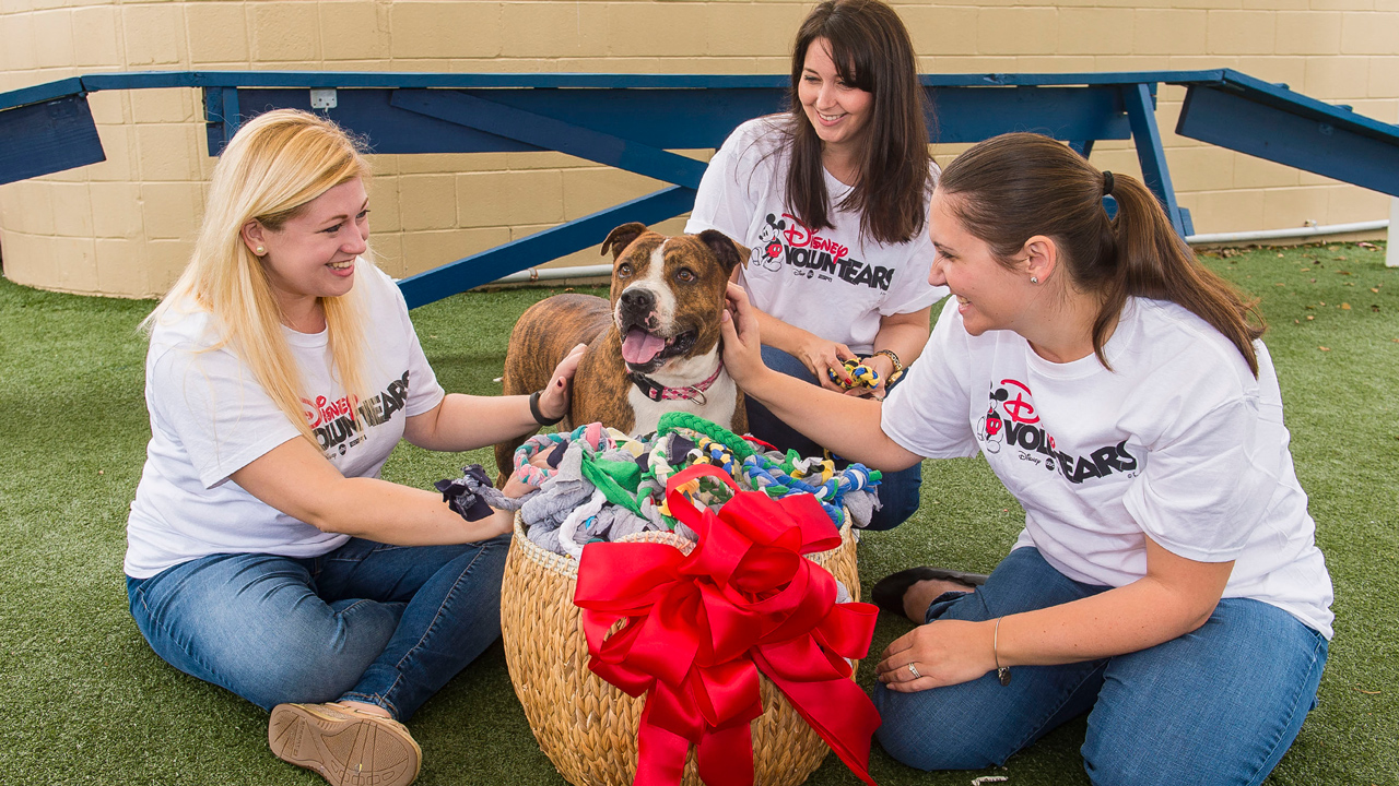"""Pet Alliance of Greater Orlando Receives """"Playful"""" Donation from Disney Vacation Club VoluntEARS"""