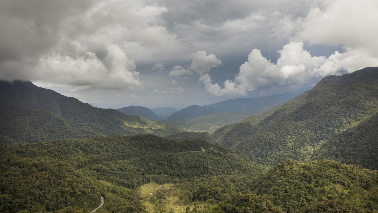 New Coffee Blend Helps Peruvian Communities