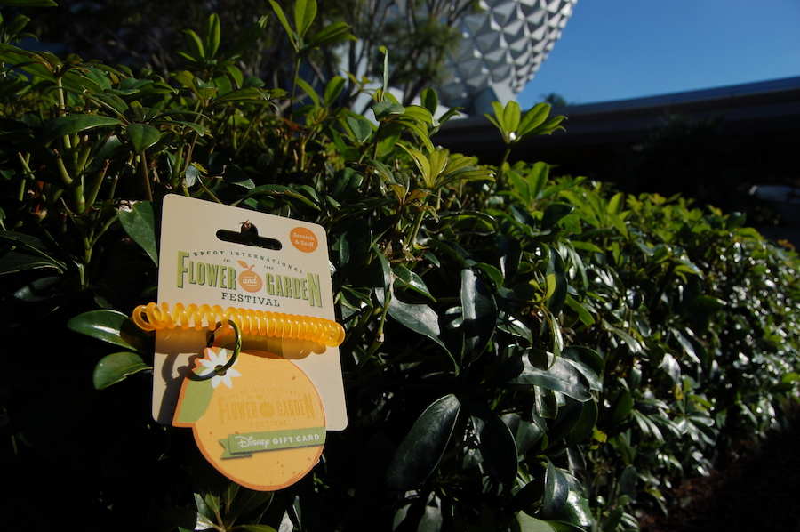 Stop and Smell the Oranges – New Disney Gift Card for Epcot International Flower & Garden Festival!