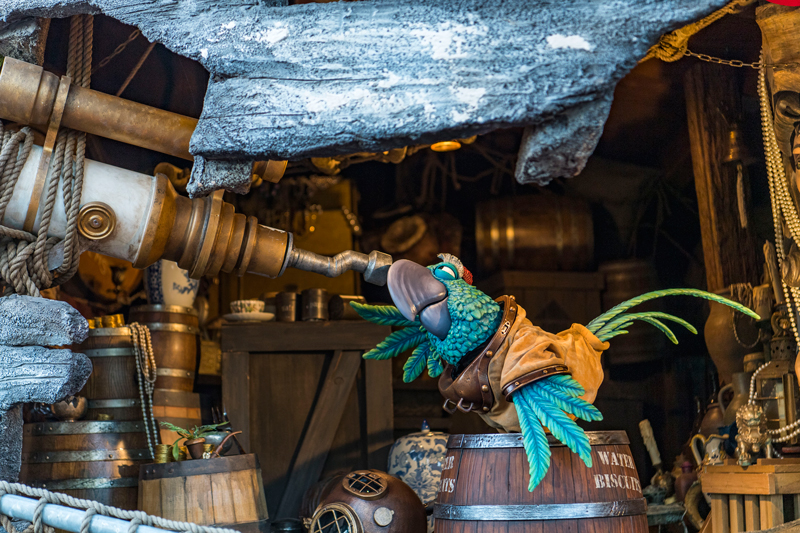 Miss Adventure Falls Opens Today at Disney's Typhoon Lagoon Water Park