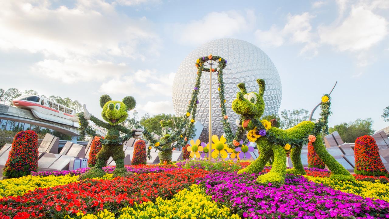 Make the most of memory maker at the epcot international flower garden festival disney parks for Disney flower and garden festival