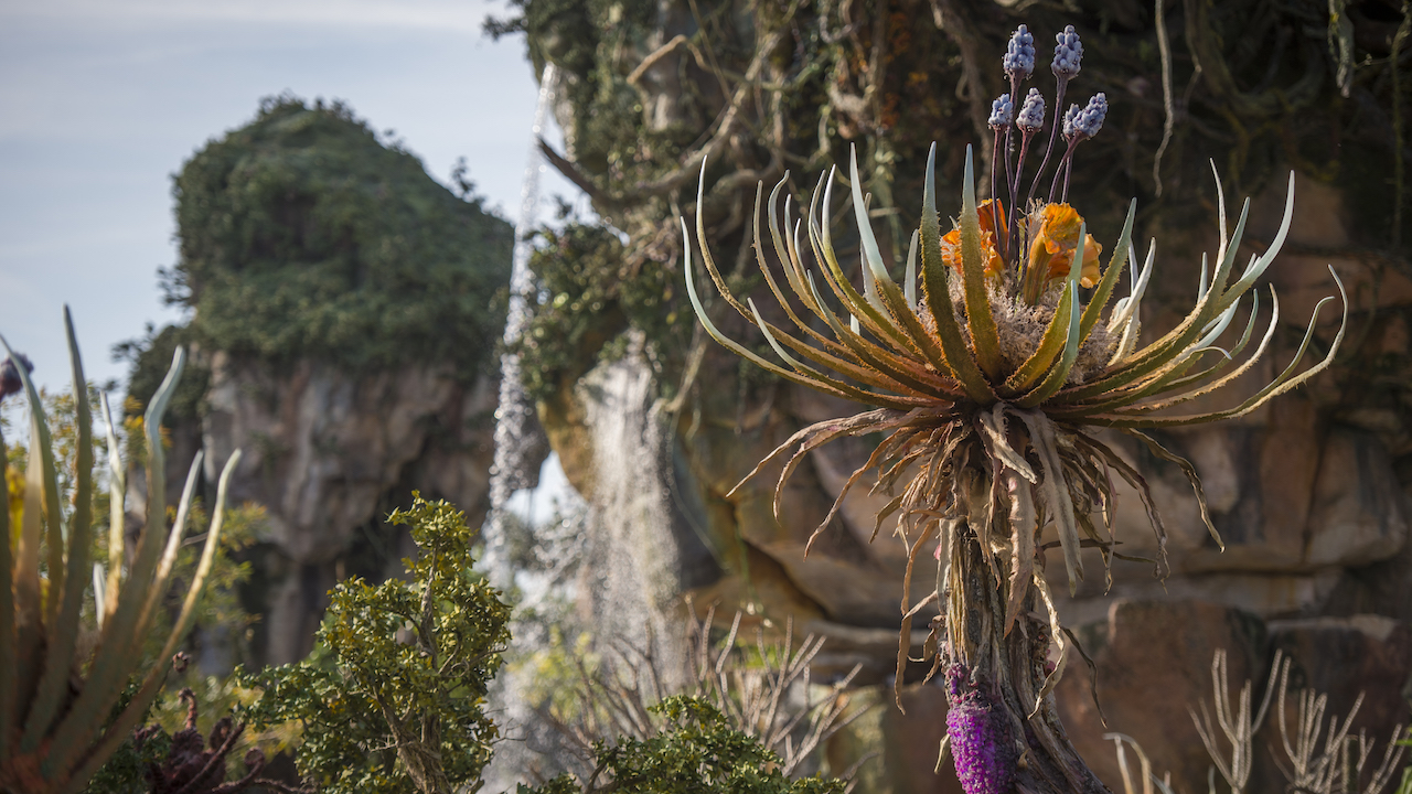 'Connect to Protect' Introduces a New Interactive Way to Protect Animals on Earth and Explore Pandora – The World of Avatar at Disney's Animal Kingdom