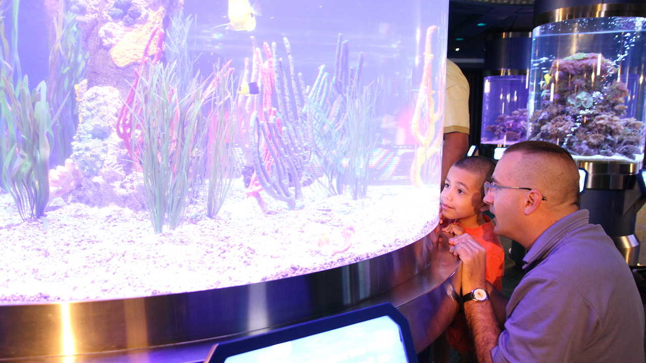 Wildlife Wednesday: Celebrate World Ocean Day June 8