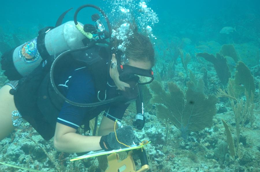Wildlife Wednesday: Celebrate World Ocean Day June8