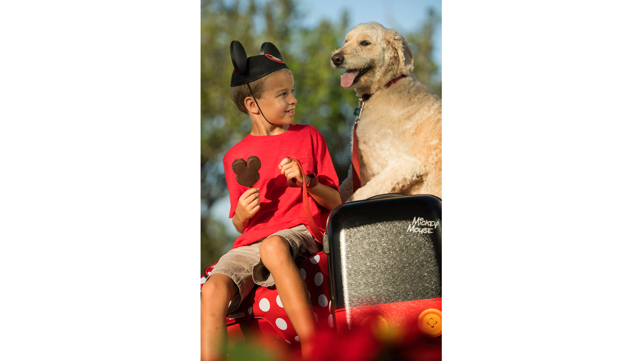 Dogs Welcome at Select Walt Disney World Hotels | Disney