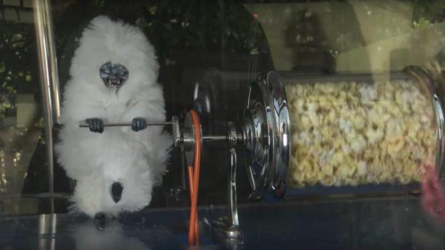 The 'Popcorn People' of Disneyland Park