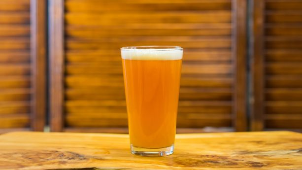 Tropical IPA Shandy at Disney California Adventure Food & Wine Festival