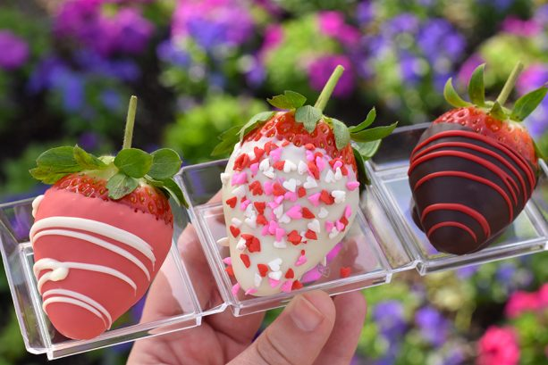 Hand-Dipped Chocolate Strawberries at Pecos Bill Tall Tale Inn and Café at Magic Kingdom Park