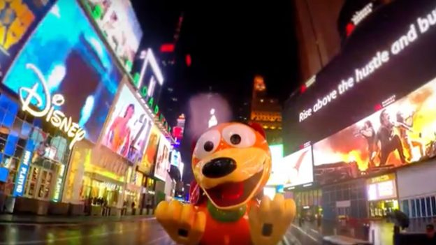 Slinky Dog in New York City