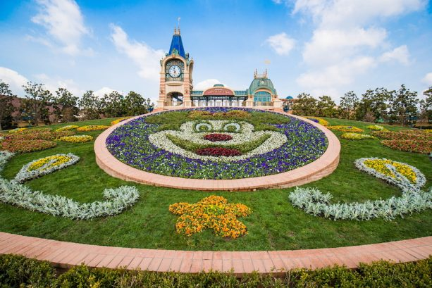Blooming Flowers at Shanghai Disneyland Resort