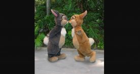 Thumper & Ms. Bunny