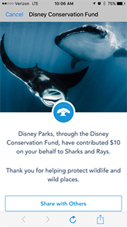Connect to Protect Conservation Fund