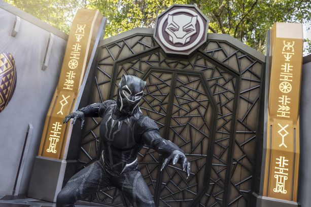 Black Panther Visits Hong Kong Disneyland