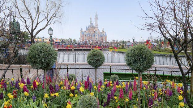 Spring at Shanghai Disney Resort