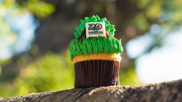 Tree of Life Cupcake at Disney's Animal Kingdom Theme Park for Party for the Planet