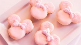 Millennial Pink Raspberry Cream Puffs at Disney's Yacht & Beach Club Resorts