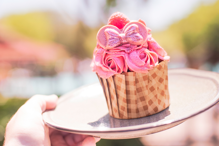 Millennial Pink Raspberry Chocolate Cupcake at The Mara at Disney's Animal Kingdom Lodge