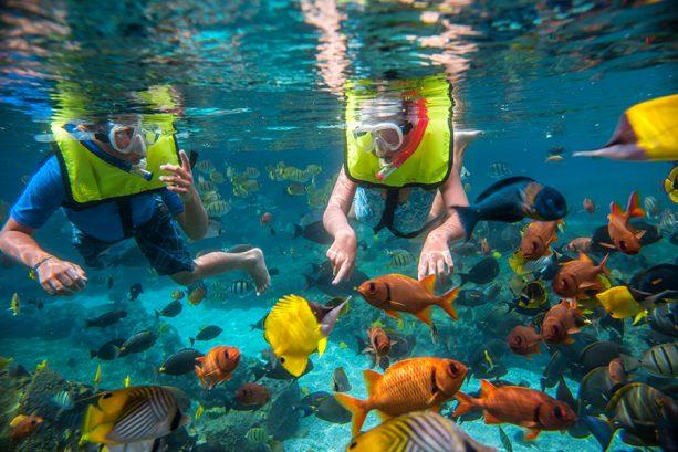 Rainbow Reef at Disneys Aulani