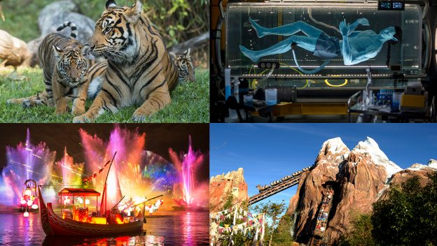#DisneyParksLIVE To Stream Disney's Animal Kingdom Anniversary Celebration