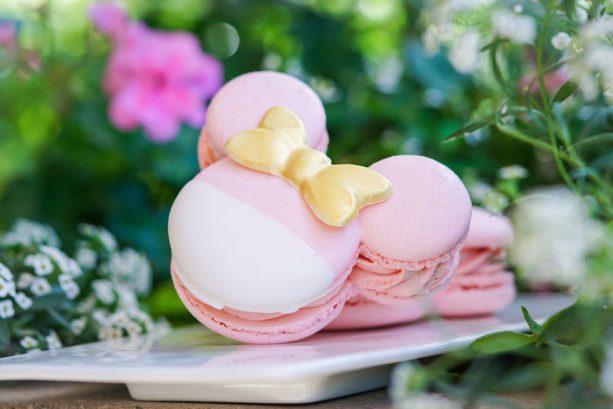 Millennial Pink Macaron at Disneyland Resort