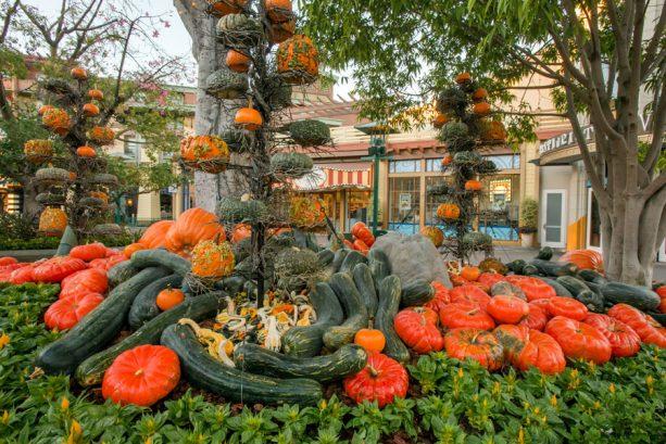 Autumn in Downtown Disney District at Disneyland Resort