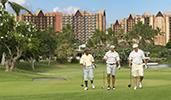 Ko Olina Resort Area