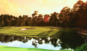 Disneys Magnolia Golf Course featuring greens surrounded by trees and a body of water