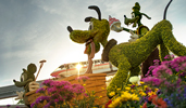 Flowers around topiaries shaped like Pluto, Goofy and Mickey Mouse
