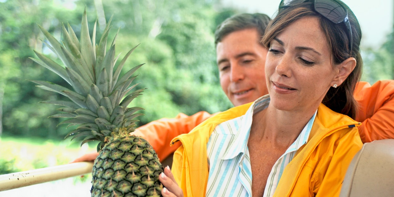 A couple examines a pineapple at a plantation