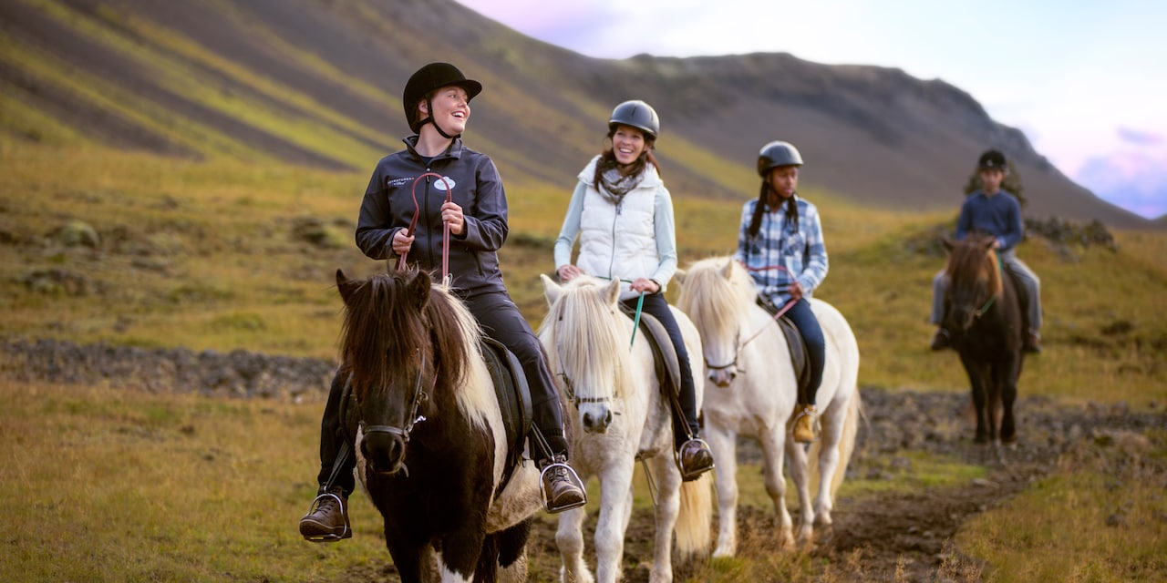 An Adventure Guide leads 3 people on a horseback ride