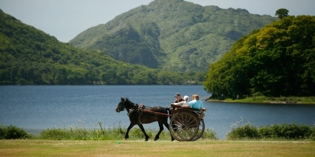 A family rides in a horse drawn carriage near a lake