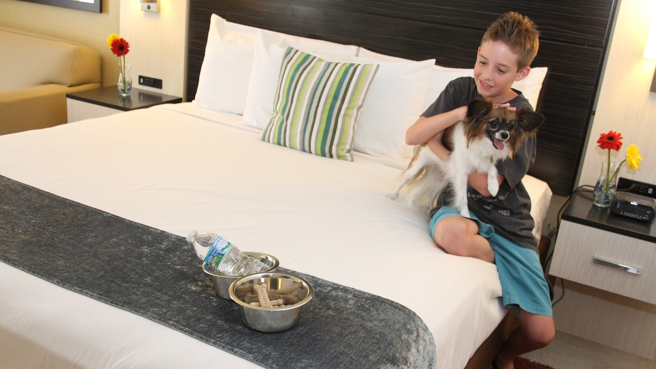 A boy on a bed holds a dog near 2 bowls, one with a bottle of water, the other filled with dog treats