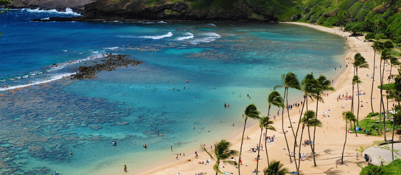 Beachgoers lie in the sand, walk along the shore and wade in the shallow waters of a palm tree lined cove on Oahu
