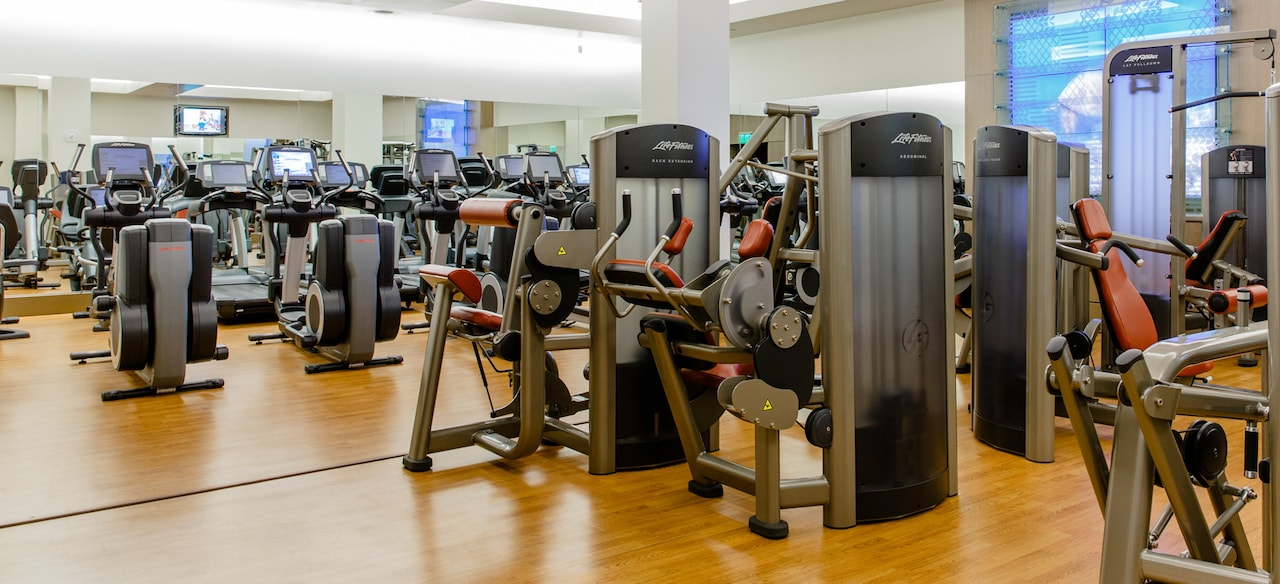 Life Fitness back extension, abdominal, shoulder press, lat pull-down and seated leg curl machines