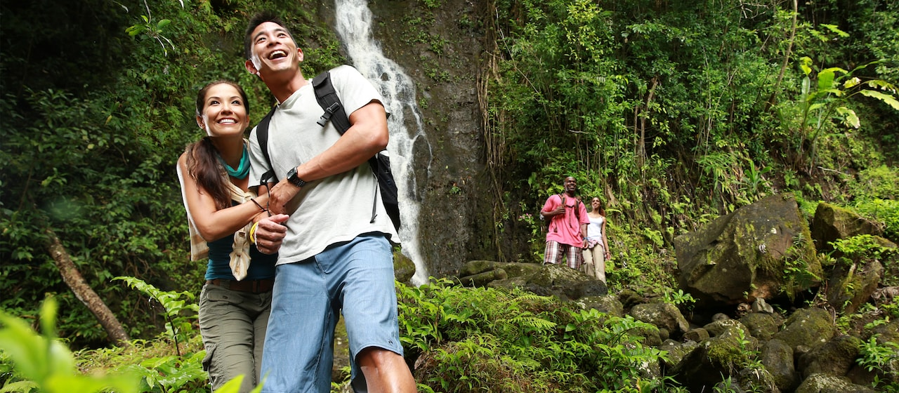 Two young couples admire the beauty of a waterfall in a tropical forest