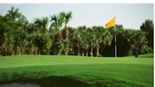 A flagstick on a lush, green golf course rimmed by palm trees