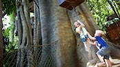 Two boys play and pull a rope at Tarzan's Treehouse