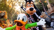Pumpkin Donald and Skeleton Goofy dressed for Halloween Time at Disneyland Resort