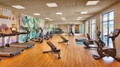 The fitness center features a row of treadmills, life cycles, weights and other workout equipment