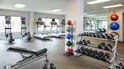 Fitness center has elliptical machines, treadmills, free weights, medicine balls and balance balls