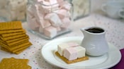 A plate containing a graham cracker topped with 4 square marshmallows and a cup of chocolate sauce set on the s'mores bar
