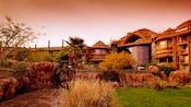 The savanna at Disney's Animal Kingdom Villas – Jambo House