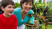 A boy and his grandmother marvel at monarch and zebra longwing butterflies on a flowering plant