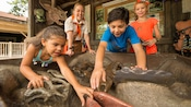 Children touch dinosaur fossils as a smiling Wilderness Explorer Troop Leader watches
