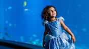 A little girl wearing a Cinderella dress in the Undersea Viewing Area at SeaBase