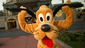 Disney's Pluto strikes a pose for the camera holding an ear in each paw