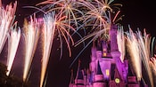 Fireworks light up the night sky over Cinderella's Castle